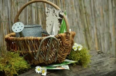5 Tipps, wie Sie Ihren Garten aus dem Winterschlaf holen