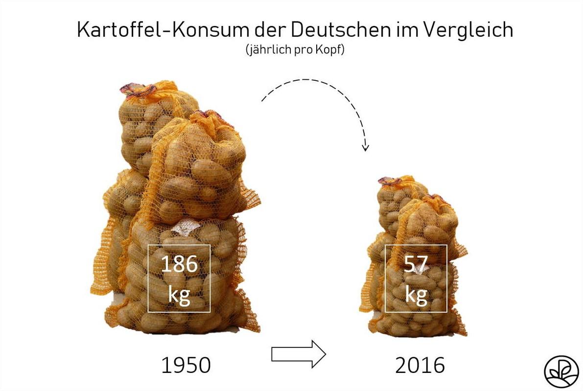 Kartoffel Konsum