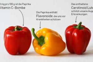 Paprika Info