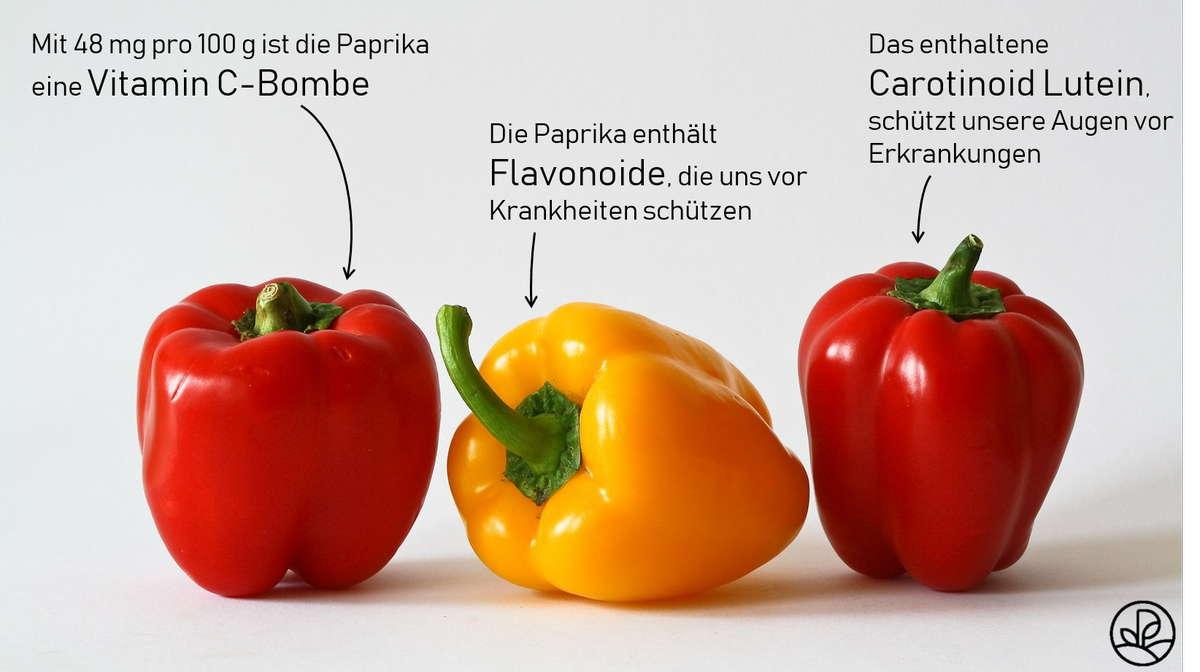 Paprika vitamin c