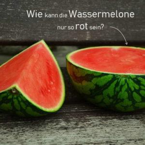 Wassermelone: Kalorien Und Nährwerte