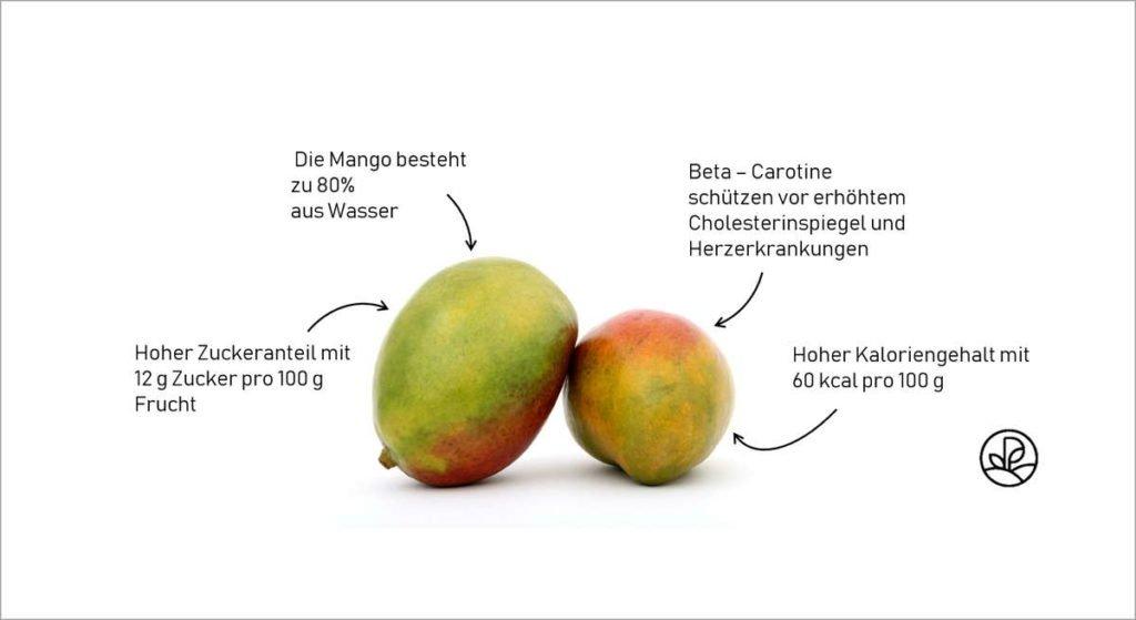 Infors über Nährwerte der Mango