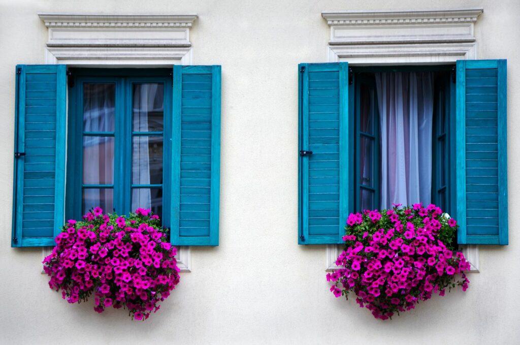 Petunien auf Fensterbank