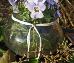 5 Hornveilchen In Vase