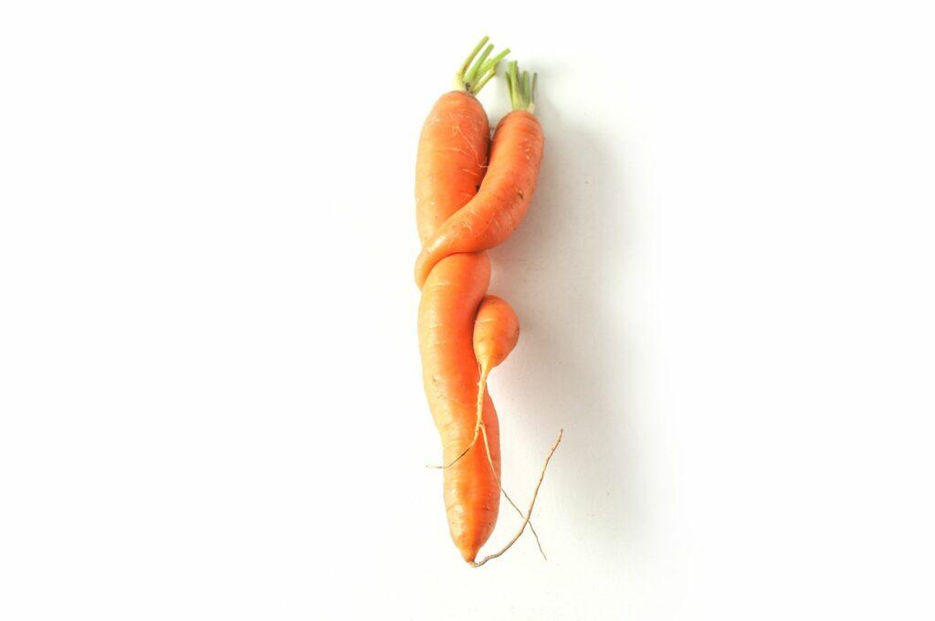 verformte Karotte