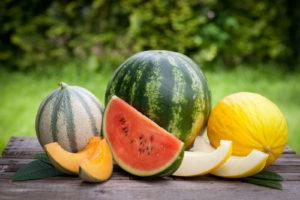 Verschiedene Melonensorten Auf Einem Tisch Im Garten