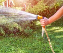 14-Rasen Per Hand Bewässern