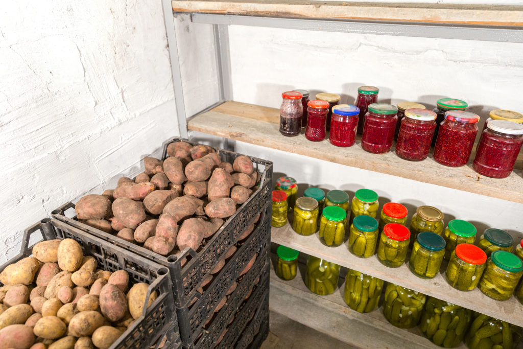 Kartoffeln im Keller lagern