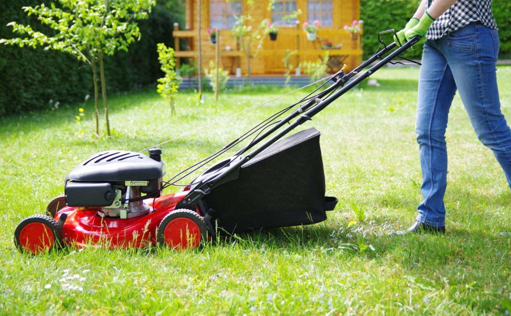 Rasenmähen Rasenmäher