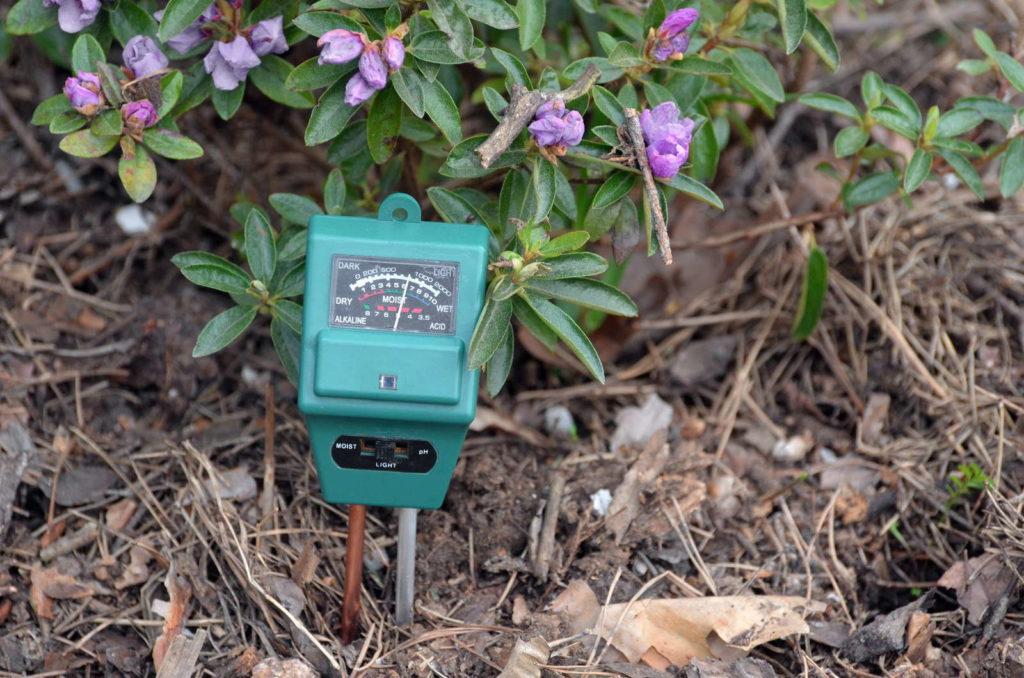 Bodenmessgerät pH messen