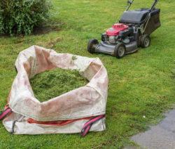 G10-Rasenmulcher Mit Sack Voll Gras