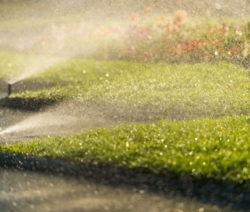 G11-Rasenbewässerung