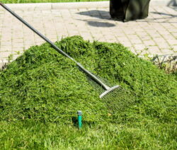 Rasenhaufen Rechen Mulch