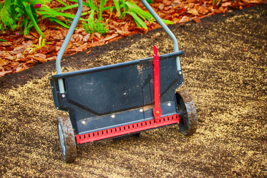 Samenverteiler zum Rasen säen