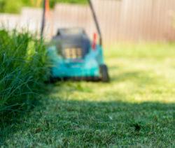 G15-Rasenmäher Hohes Gras