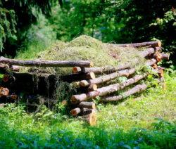 Komposthaufen Mit Gras