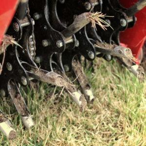 Rasen Vertikutieren, Lüften & Sanden: Was Ist Wann Am Besten?