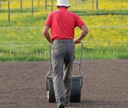 Mann Planiert Boden Mit Wlze
