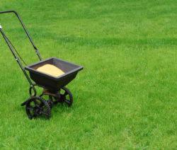 Wiese Sand Karre Rasen Sanden