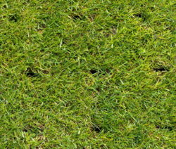 Durchlöcherter Boden Rasen Lüften