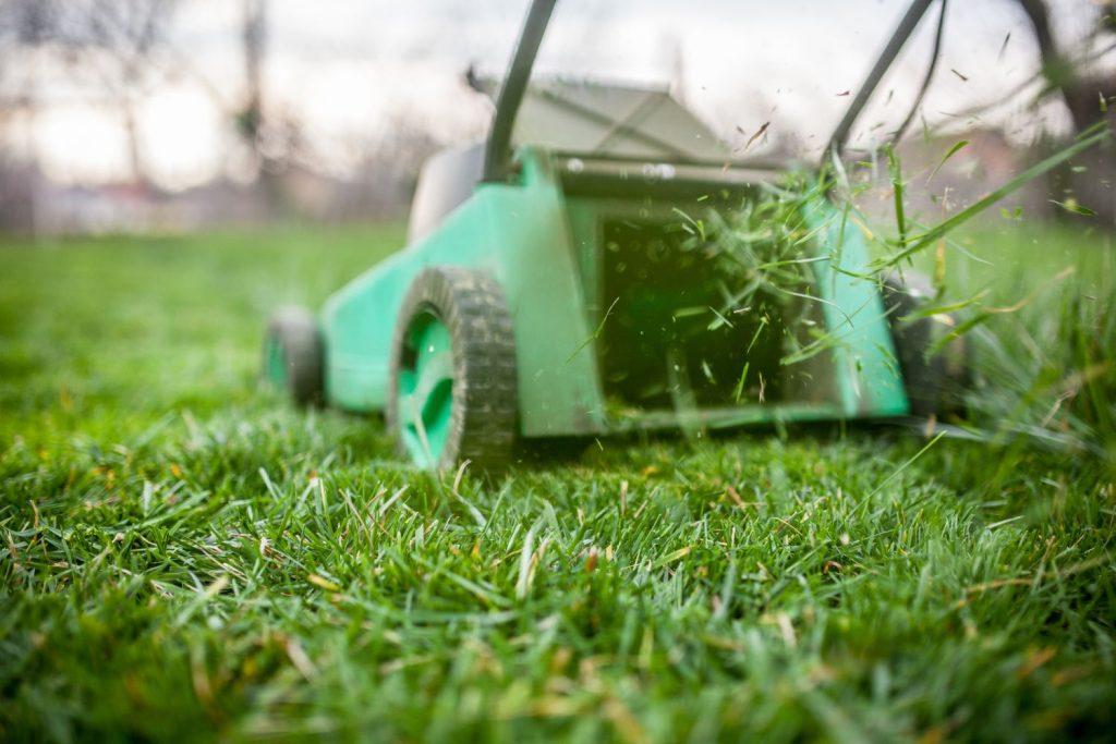 Mulchmäher Rasenschnitt verteilend
