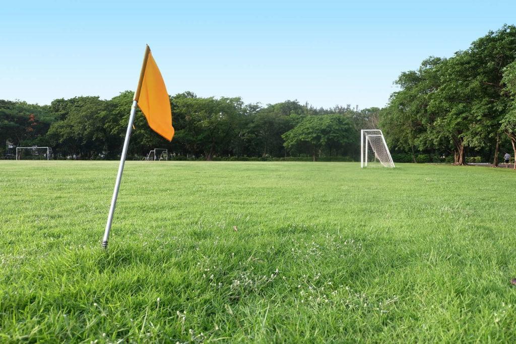 Rasen mit Fußballtor