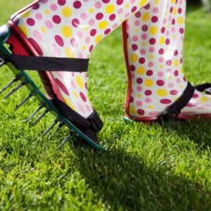 Rasen Lüften: Vorteile & Vorgehen Beim Rasenlüften?