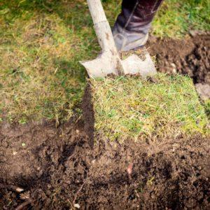 Rasen Ausbessern & Reparieren: Alternativen Zum Rasenerneuern