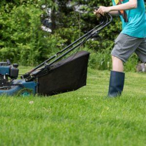 Rasen Mähen Oder Rasen Mulchen: Was Ist Besser?