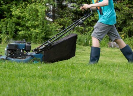Ein Mann Mäht Den Rasen Mit Einem Rasenmäher