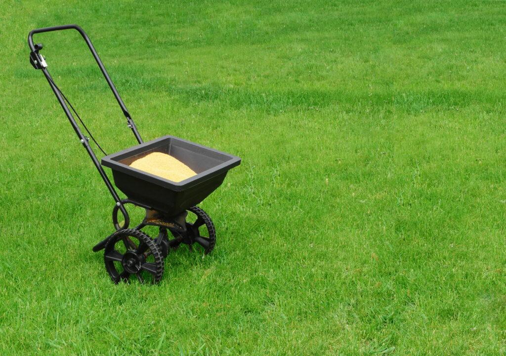 Sandwagen auf Rasen