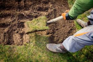 Mann Hebt Rasen Ab Mit Spaten