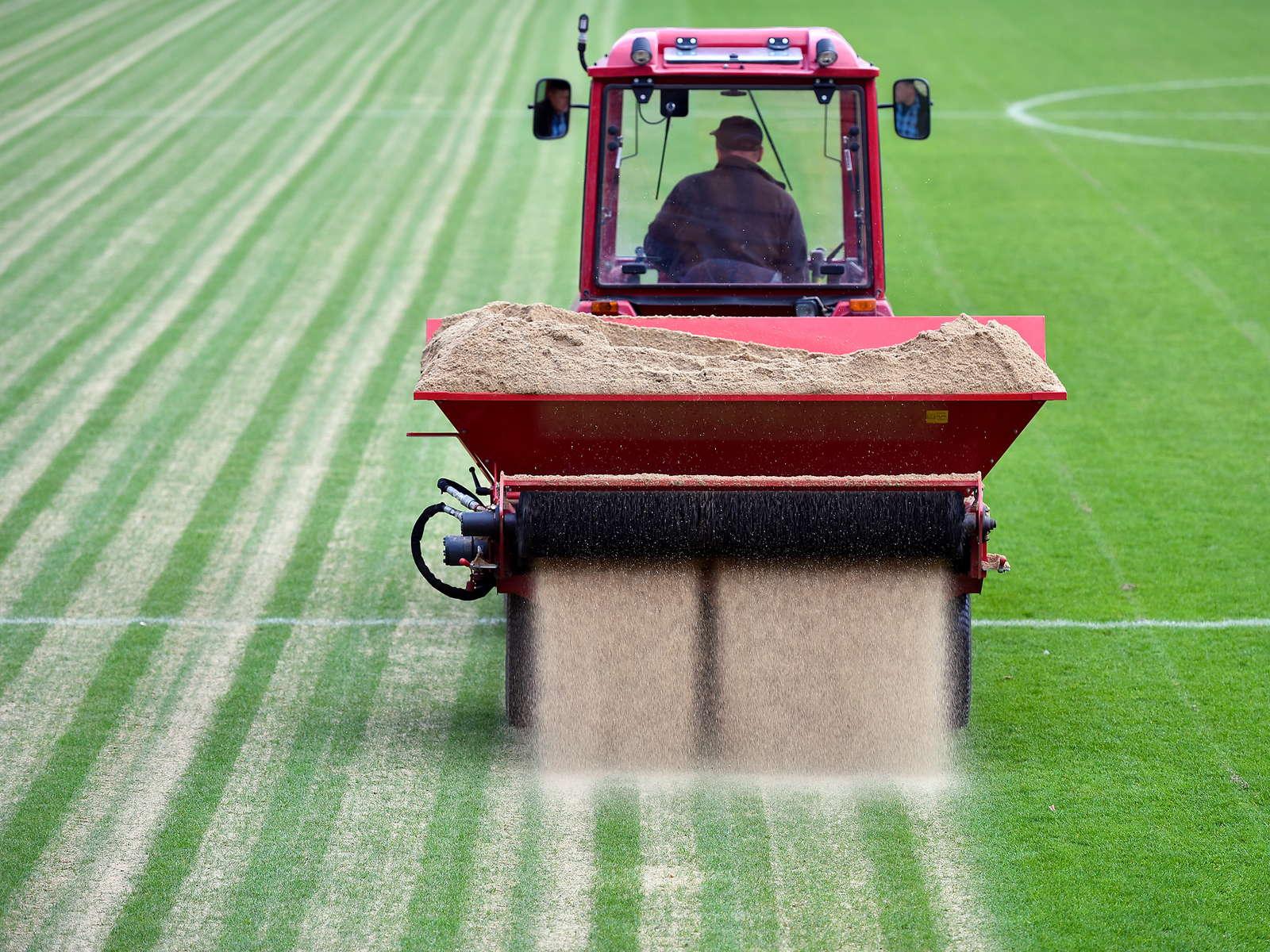 Rasen Vertikutieren, Lüften & Sanden: Was Ist Wann Am