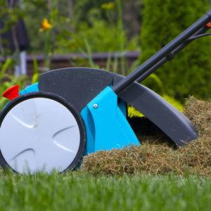 Moos Im Rasen Entfernen: 7 Tipps Vom Experten