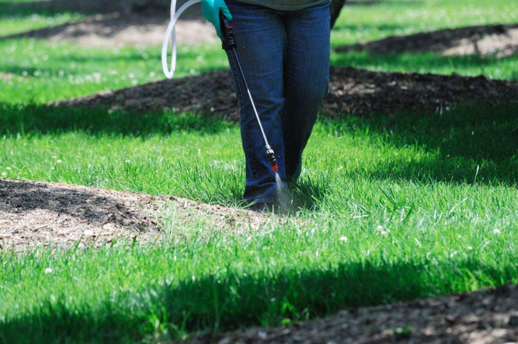 Unkrautvernichter wird in Rasen verteilt