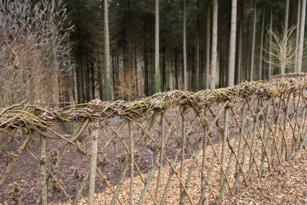 Zaun aus Weidenzweigen