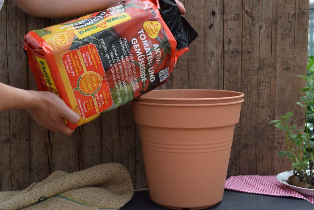 Topf mit erde auffüllen Kartoffeln im topf anbauen