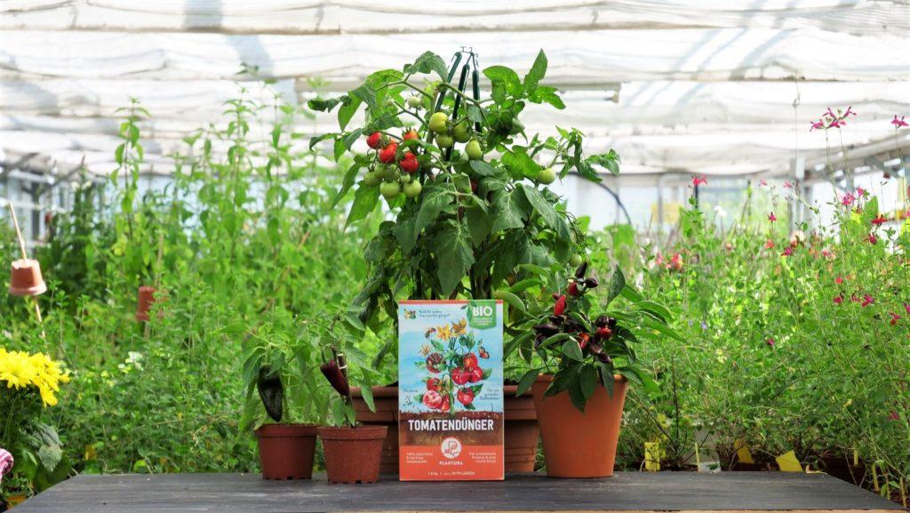 Plantura Bio-Tomatendünger mit Pflanzen