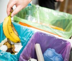 Bananenschale Mülleimer
