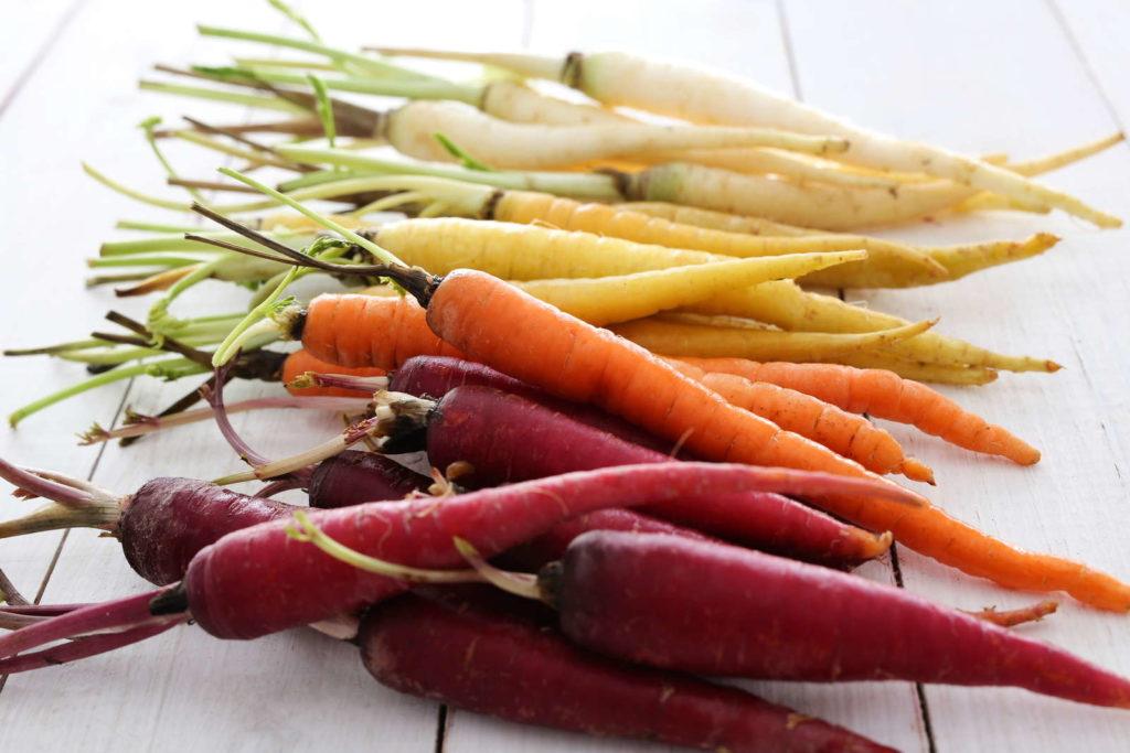 Bunte Karotten verschiedene Sorten