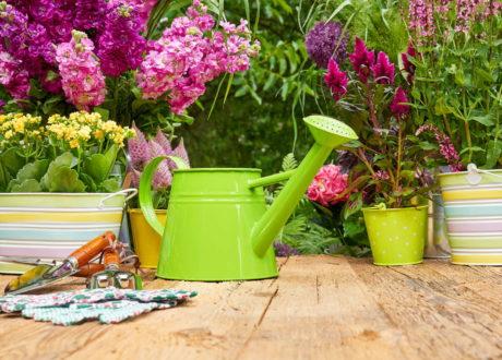 Gartenzubehör Auf Holz Garten Arbeit Gießkanne Pflanzen Schere Handschuhe