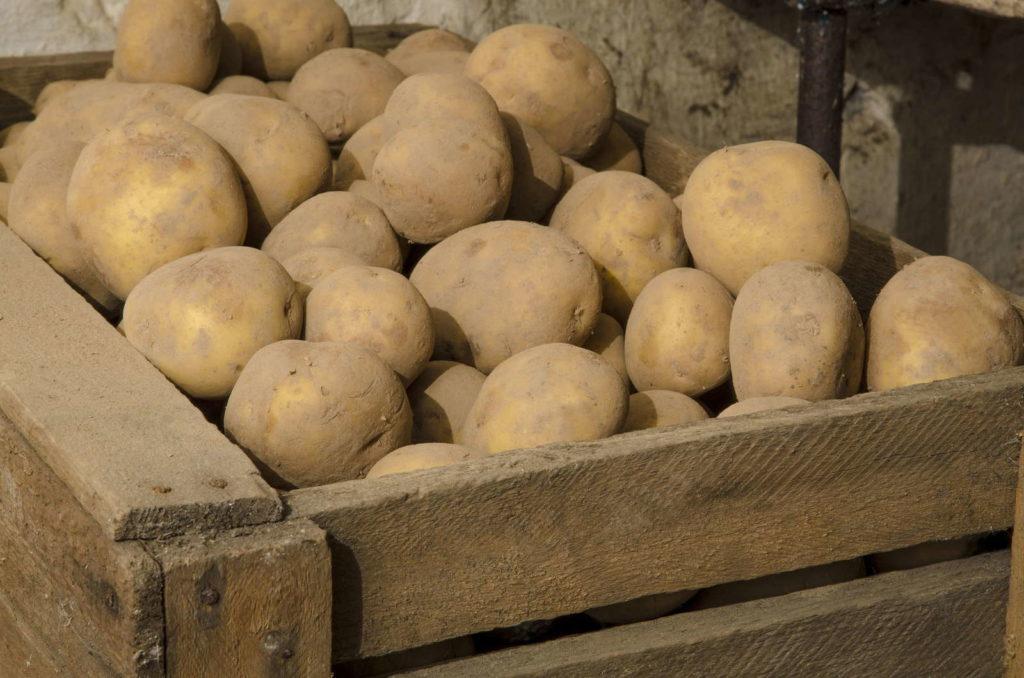 Kartoffeln lagern Holzkiste Keller