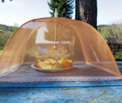 Schirm Gegen Obstfliegen Abdeckhaube