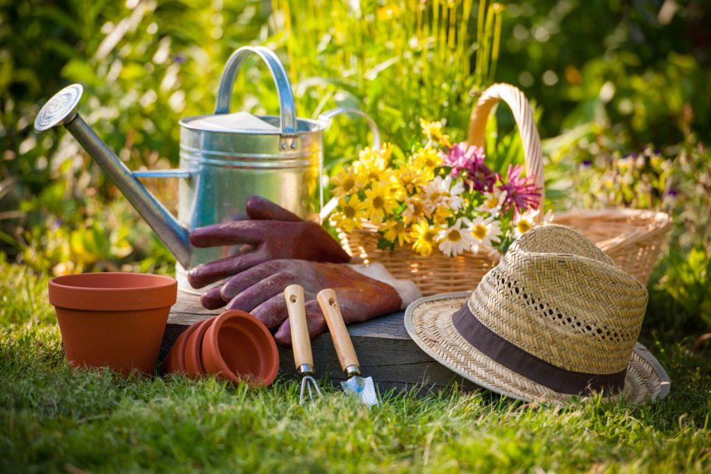 verschiedene Gartenwerkzeuge