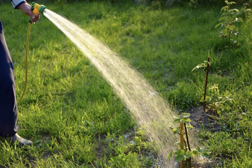 Wasser gegen Schädlinge