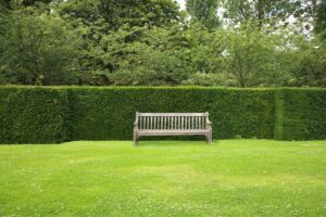Bank Vor Hecke Im Garten Grün