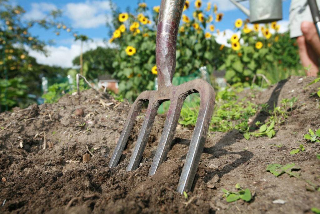 Garten umgraben Gabel im Beet