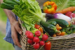 Geerntetes Gemüse Im Korb Von Hand Getragen