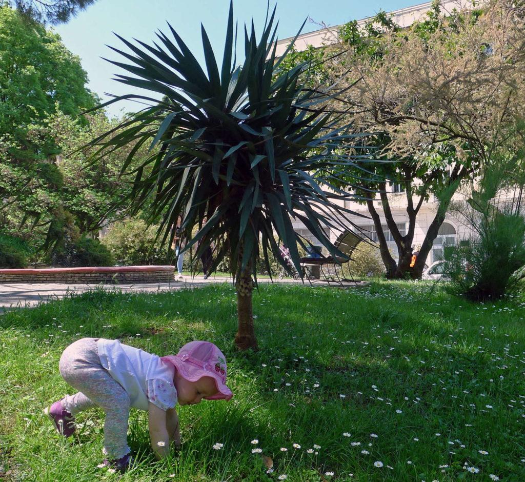 Kind spielt vor Palme im Gras