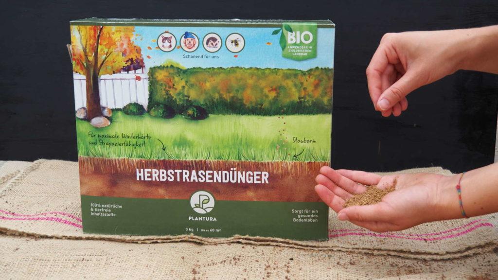 Plantura Herbstrasendünger Hand mit Düngerkörnern